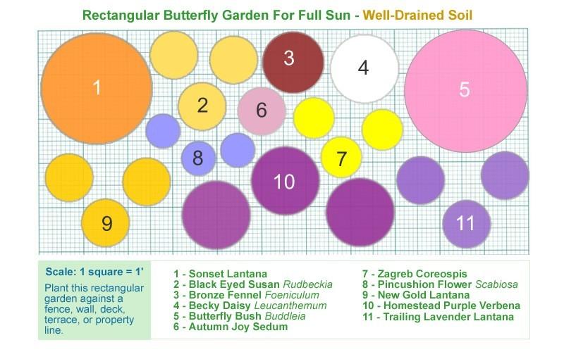 Free Butterfly Garden Designs – Free Shade Garden Plans